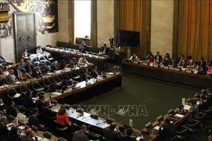 Việt Nam ủng hộ các nỗ lực giải trừ vũ khí hạt nhân