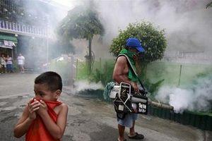 Dịch sốt xuất huyết bùng phát ở Philippines, 622 người tử vong