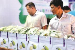 Vinamit bắc cầu Organic vào Trung Quốc