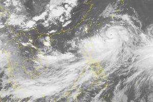 Các tỉnh, thành ven biển Quảng Ninh - Bình Định chủ động ứng phó với áp thấp nhiệt đới