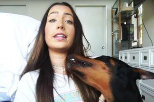 Vlogger người Mỹ bị 'ném đá' vì clip ngược đãi động vật