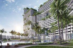 Thanh Long Bay huy động vốn trái phép: Chủ đầu tư Nam Group sai phạm như thế nào?