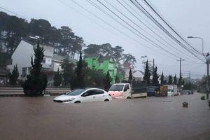 Thiệt hại hàng nghìn tỷ đồng trong mưa lớn khủng khiếp ở Tây Nguyên