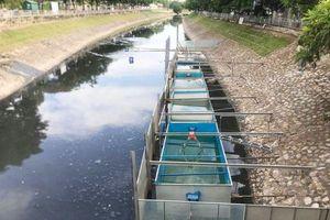 Chuyên gia Nhật Bản tắm nước sông Tô Lịch: 'Nước không còn mùi và không bị ngứa'