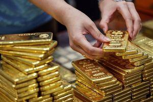 Giá vàng SJC trong nước lao dốc