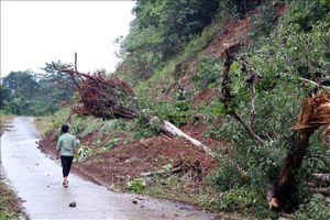 Khu vực Tây Nguyên, Nam Bộ theo dõi chặt chẽ diễn biến mưa, lũ để chủ động ứng phó