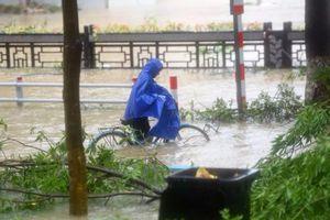 Bão Lekima gây sạt lở đất miền đông Trung Quốc, ít nhất 18 người chết