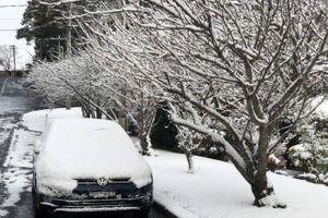 'Gió Nam Cực' đáng sợ sắp đổ bộ Australia, tuyết rơi sau nhiều thập kỷ