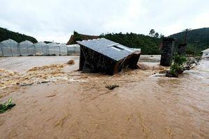 Sự kiện 24/7: Mưa, lũ gây thiệt hại nặng tại Nam Bộ, Tây Nguyên