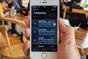 Cách chọn cùng lúc nhiều email, file, thư mục trên iOS 13 và iPadOS 13