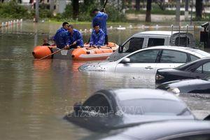 Ít nhất 48 người Trung Quốc thiệt mạng, mất tích do bão Lekima