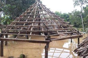 Gia tăng số người chết do mưa lũ ở Đồng Nai