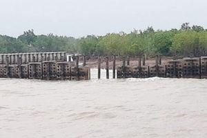 Cà Mau: Khoảng 300 m kè cấp bách bảo vệ bờ biển Đông bị hư hỏng