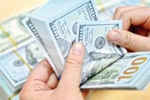 Tỷ giá ngoại tệ ngày 12/8: Giảm nhẹ