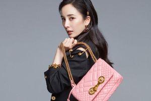 Sau Dolce & Gabbana, đến lượt nhà mốt Versace bị Trung Quốc tẩy chay