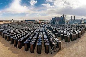 Giá xăng dầu hôm nay 12/8 đồng loạt giảm