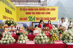 Lạng Sơn: Khai mạc hội na - Chi Lăng 2019