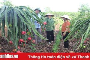 Nỗ lực giúp hội viên phụ nữ huyện Như Xuân phát triển kinh tế