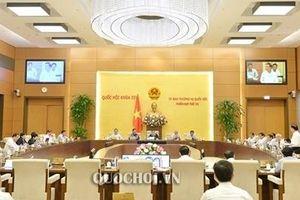 Ủy ban Chứng khóa Nhà nước trực thuộc Bộ Tài chính, nhưng cần tăng thẩm quyền