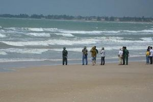 Đã tìm thấy thi thể 2 nạn nhân trong vụ đuối nước tập thể tại Bình Thuận