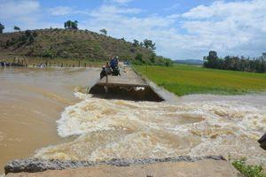 Vỡ đê bao Quảng Điền ở Đắk Lắk , lũ đe dọa nhấn chìm 2.000 ha lúa