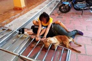 Cặp tình nhân chuyên trộm chó bị người dân vây bắt
