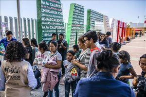 Mỹ sẽ không cấp thẻ xanh cho người nhập cư sống dựa vào bảo trợ xã hội
