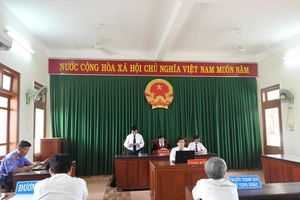 Quảng Ngãi: Phán quyết của Tòa án thấu tình, đạt lý