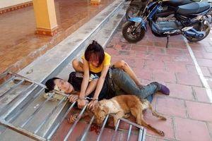 Đôi nam nữ vừa bị xử phạt vì ăn trộm chó, tiếp tục 'hành nghề' bị dân phát hiện và bắt giữ lúc sáng sớm