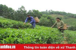 Gỡ khó trong phát triển đảng viên ở các xã miền núi huyện Triệu Sơn