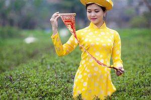 Phát động Cuộc thi 'Người đẹp du lịch Non nước Cao Bằng' năm 2019