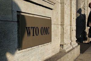 Mỹ đe dọa rút khỏi WTO, Nga lên tiếng phản đối