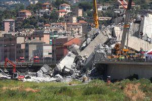 Một số phần của cầu cạn Morandi bị sập không được bảo trì trong suốt 25 năm