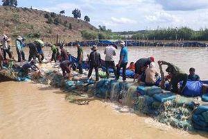 Đắk Lắk: Tuyến đê bao bị vỡ đã được khắc phục