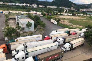 Hơn 500 xe container thanh long ùn ứ ở cửa khẩu Lào Cai