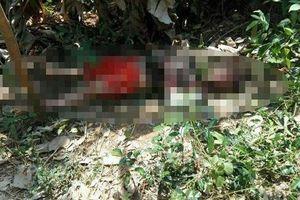 Bình Phước: Phát hiện người đàn ông tử vong trong vườn nhà, trên thi thể có nhiều vết thương