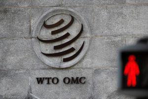 Đằng sau việc Mỹ dọa rời WTO