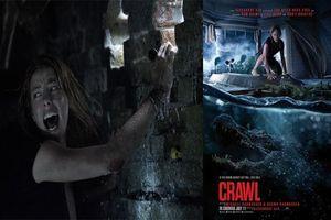 Review Crawl - Địa đạo cá sấu tử thần: Những bộ phim kinh dị khác bỗng bị biến thành trò hề