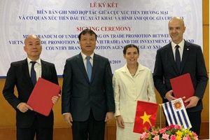 Doanh nghiệp Việt Nam 'rộng đường' tại thị trường Uruguay