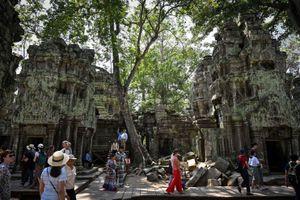 Campuchia: Bảo vệ cảnh quan di tích Angkor Wat