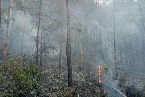 Huế: Cháy rừng ở núi Ngũ Phong tiếp tục bùng phát