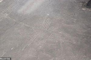 Lời giải cực sốc về đường kẻ Nazca khổng lồ