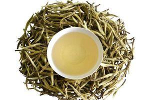 Công dụng bất ngờ của trà trắng đối với sức khỏe có thể bạn chưa biết