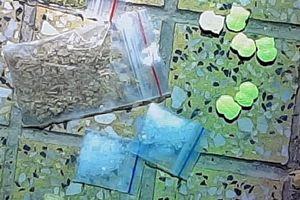 Đột kích quán bar ở Ninh Thuận, phát hiện hơn 50 người dương tính với ma túy