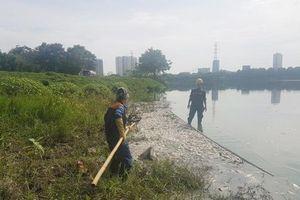 Thời tiết thay đổi khiến cá chết hàng loạt tại hồ Yên Sở