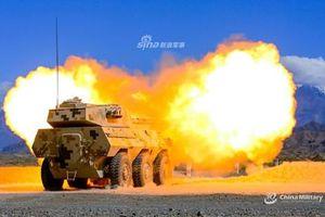 Pháo tự hành PTL-02 chống tăng với cỡ nòng 100mm như 'muỗi đốt inox'?