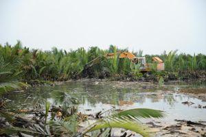 Quảng Nam: Xử lý nghiêm các hành vi phá hoại rừng dừa nước Bảy Mẫu