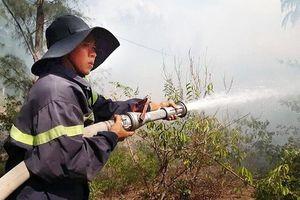 Các địa phương tập trung phòng, chống cháy rừng