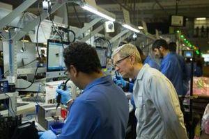 CEO Apple lo mất lợi thế với đối thủ Samsung do thuế nhập khẩu