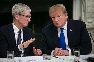 Trump: Tim Cook lo mất lợi thế trước Samsung vì thuế nhập khẩu